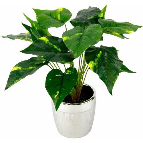 I.GE.A. Kunstpflanze »Pothospflanze im Topf« Pothospflanze, , Höhe 35 cm