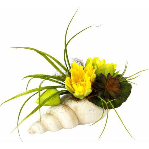 I.GE.A. Kunstpflanze »Gesteck Seerose in Muschel« Seerose, , Höhe 20 cm, gelb