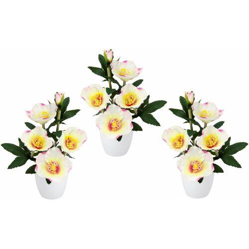 Kunstpflanze Christrose, Höhe 23 cm