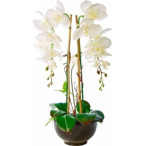 Schneider Kunstpflanze »Orchideentopf Grace«, weiß