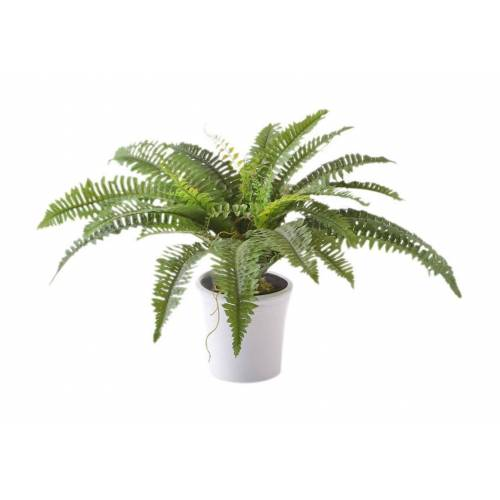 Creativ green Kunstpflanze Kunstpflanze, , Höhe 70 cm