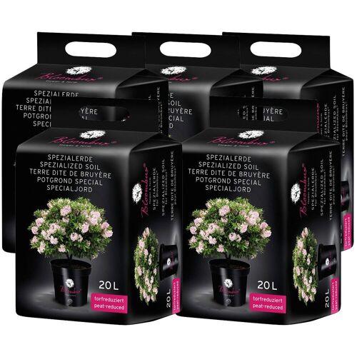 Bloombux Spezialerde , für Moorbeetpflanzen, 5x20 Liter, grün