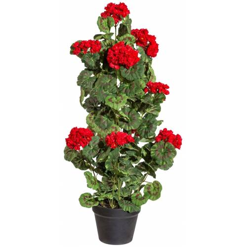 Gasper Kunstpflanze »Geranie stehend«, im Kunststofftopf, H: 80 cm, rot, rot