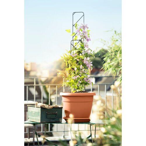 Emsa Set: Blumenkasten »MY CITY GARDEN«, inkl. Untersetzer & Rankgitter, natur