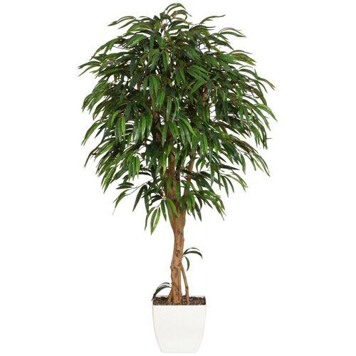 Gasper Kunstpflanze »Weeping-Ficus«, H: 180 cm, grün