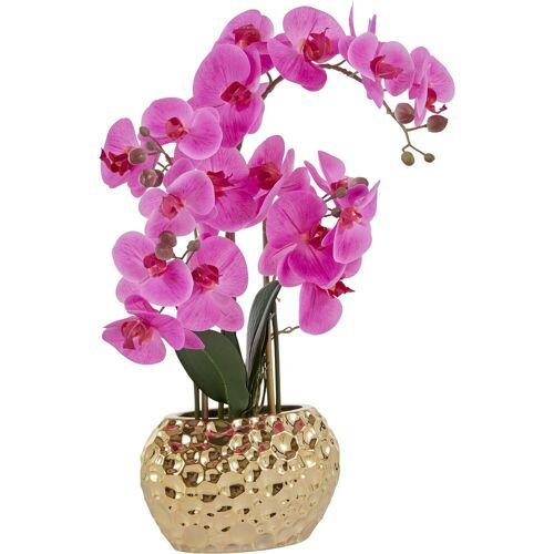 Leonique Kunstpflanze »Orchidee« Orchidee, , Höhe 55 cm, lila-goldfarben