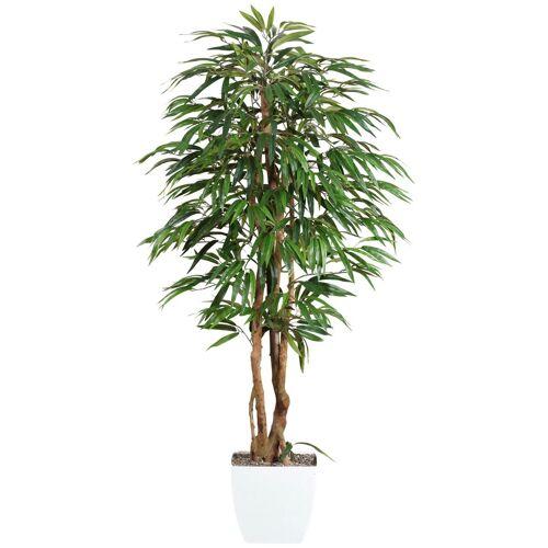 Gasper Kunstpflanze »Weeping-Ficus«, grün