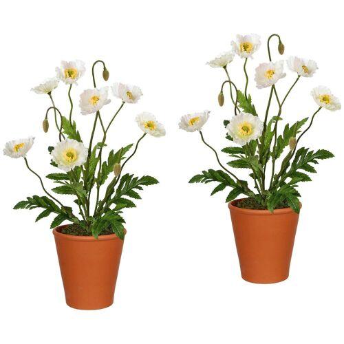Gasper Kunstpflanze »Mohnpflanzen«, 2er Set im Tontopf, H: 38 cm, weiß