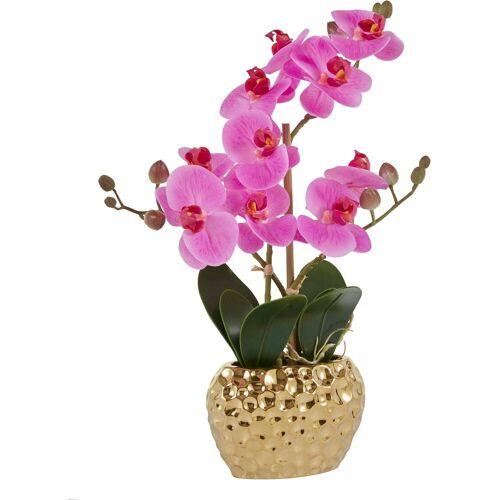Leonique Kunstpflanze »Orchidee« Orchidee, , Höhe 38 cm, lila-goldfarben