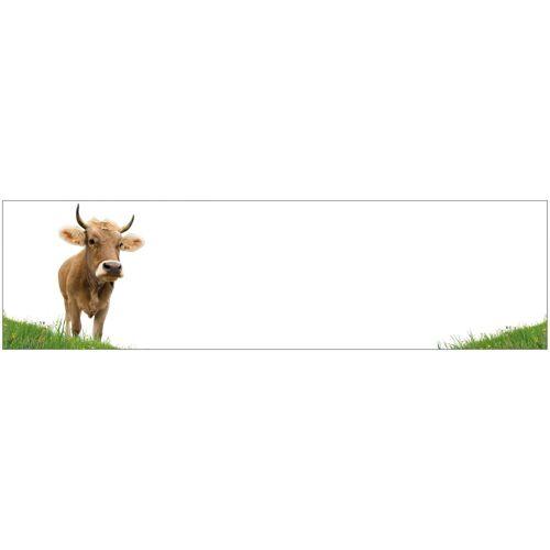 MySpotti Küchenrückwand - Spritzschutz »profix«, Kuh, 220x60 cm, weiß