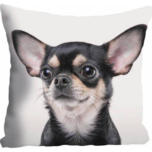 queence Kissenhülle »Mailin«, (1 Stück), mit Chihuahua