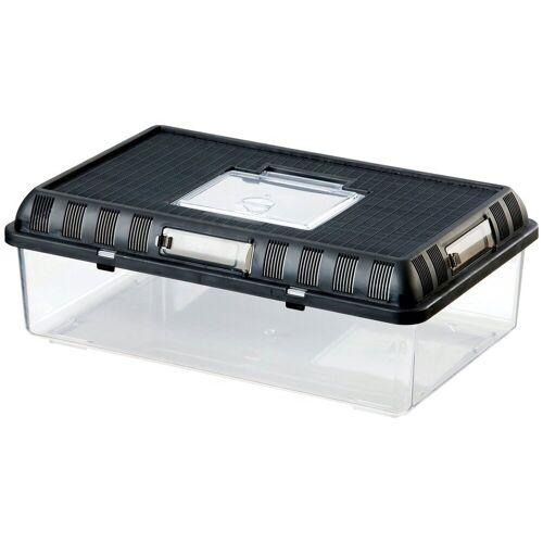Exo Terra Terrarium »Brutbox L«, BxTxH: 41,5x26,5x15 cm, schwarz