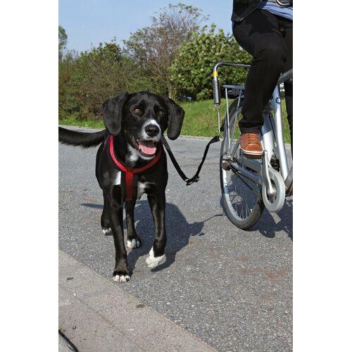 TRIXIE Hundeleine »Biker-Set«, für große Hunde, schwarz