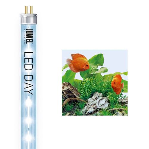 JUWEL AQUARIEN LED Aquariumleuchte »Day 9000K«