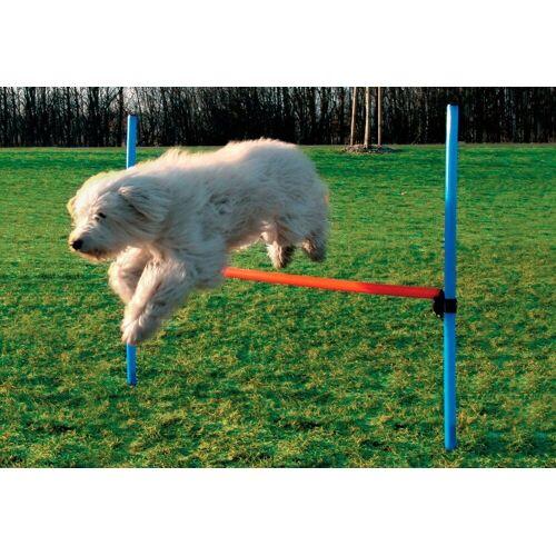 HEIM Hunde-Hürde »Dog Agility Hürde«, blau/orange