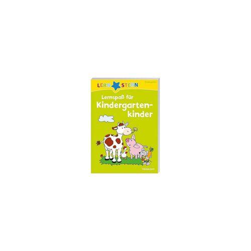Tessloff Verlag LERNSTERN: Lernspaß für Kindergartenkinder