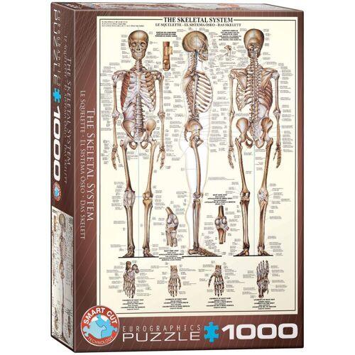 empireposter Puzzle »Das menschliche Skelett - 1000 Teile Puzzle Format 68x48 cm.«, 1000 Puzzleteile