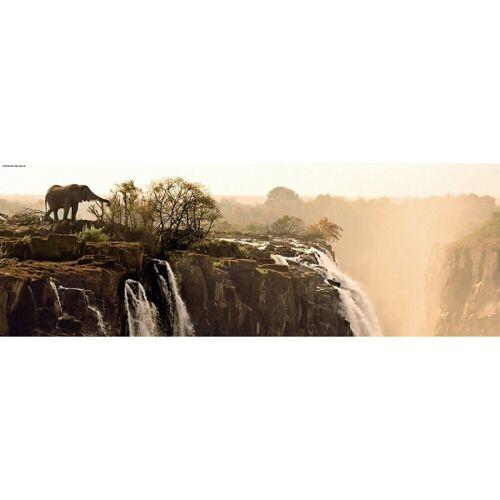 HEYE Puzzle »Panorama-Puzzle 1000 Teile - Elefant«, Puzzleteile