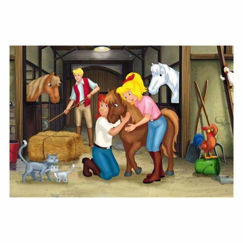 Schmidt Spiele Puzzle »Bibi & Tina Puzzle-Box im Metallkoffer 4 Puzzle«, 500 Puzzleteile