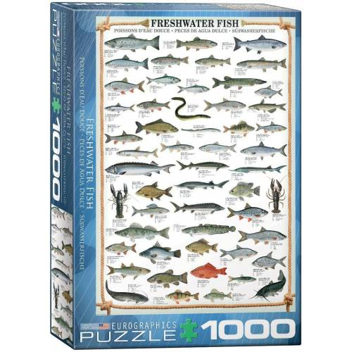 empireposter Puzzle »Süßwasser Fische - 1000 Teile Puzzle im Format 68x48 cm«, Puzzleteile