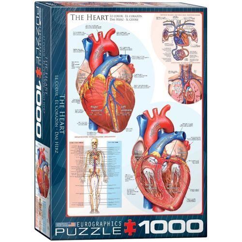 empireposter Puzzle »Das menschliche Herz - Anatomie Puzzle - 1000 Teile Puzzle im Format 68x48 cm«, 1000 Puzzleteile