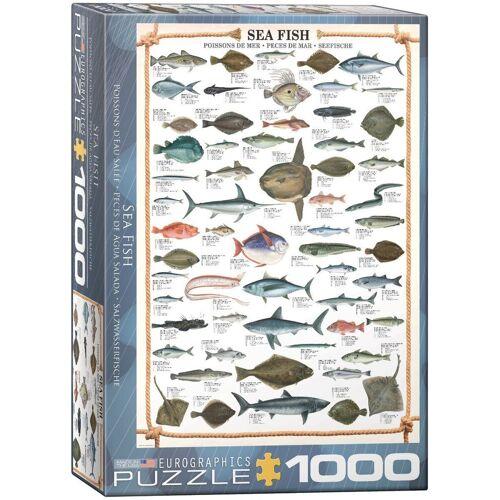 empireposter Puzzle »Seefische Meeresfische - 1000 Teile Puzzle im Format 68x48 cm«, Puzzleteile