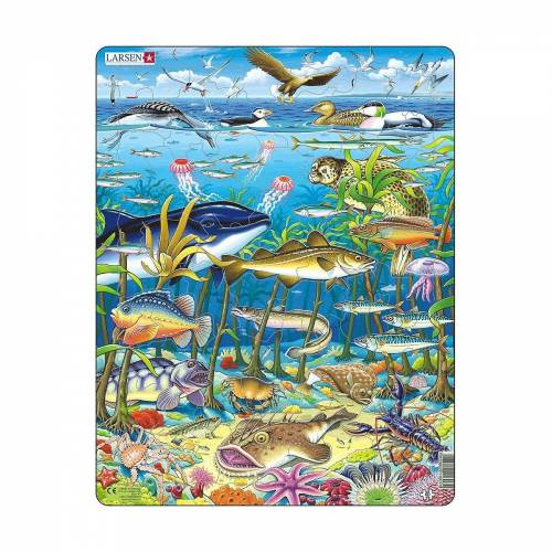 Larsen Puzzle »Rahmen-Puzzle, 60 Teile, 36x28 cm, Meeresleben«, Puzzleteile