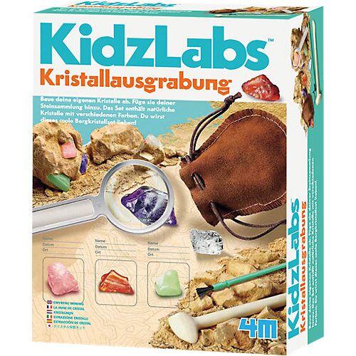 HCM Kinzel KidzLabs - Kristallausgrabung