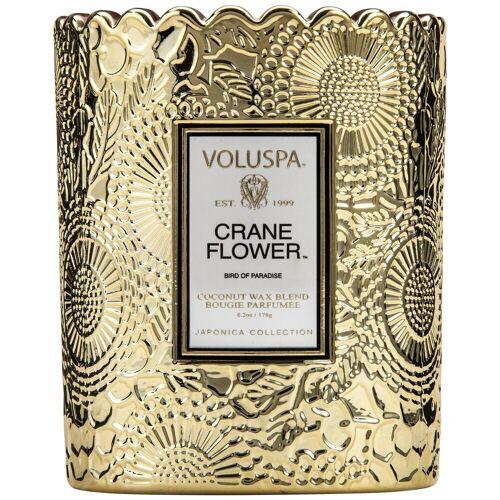VOLUSPA Boxed Scalloped Kerzentopf Paradiesvogelblume