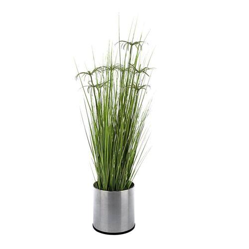 PureDay Kunstpflanze, Zyperngras