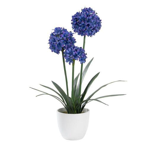 PureDay Kunstpflanze, Schmucklilie