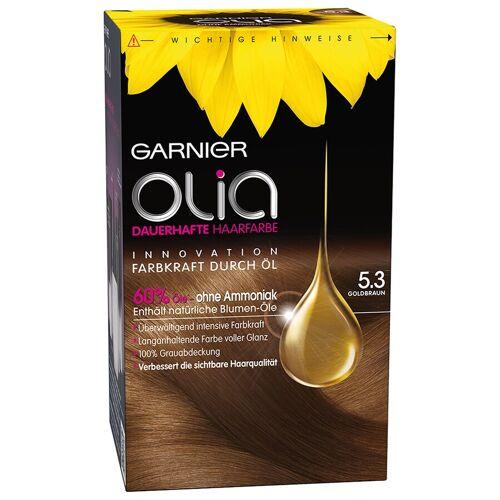 Garnier 5.3 - Goldbraun Haarfarbe