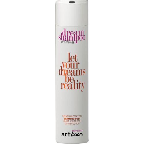 Artego Dream Shampoo