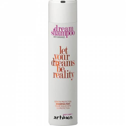 Artego Dream Shampoo