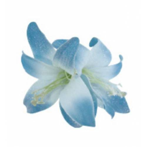 Wicked Sista WS Haarblüte Blue Large Double Lily Satin