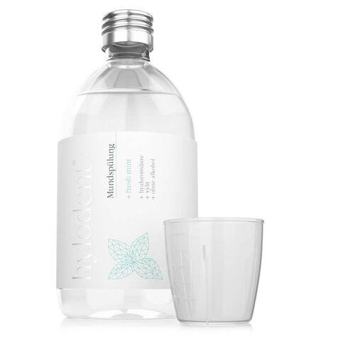 hylodent Antibakterielles Mundwasser