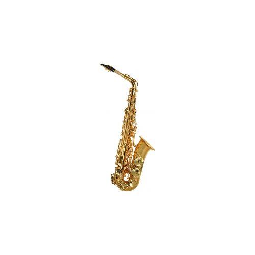 Steinbach Eb Alt-Saxophon mit hohem FIS Steinbach Saxophone ALT-SAXOPHON Einsteiger Anfänger Altsaxofon Altsaxophon Alt Saxophon Softcase