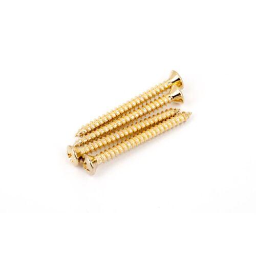 Fender - Halsschrauben Gold Kreuzschlitz
