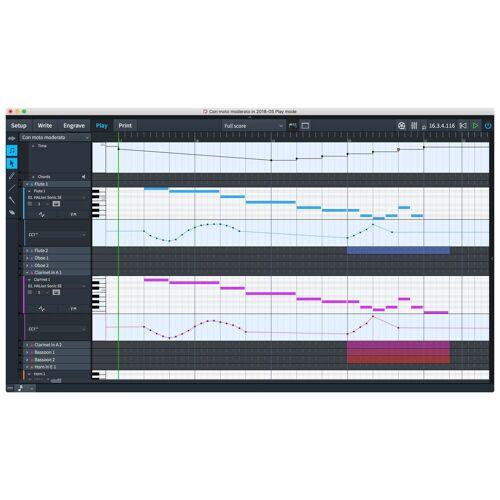 Steinberg - Dorico Pro 2 EDU (Boxed) GB,D,F,I,E, Notationssoftware