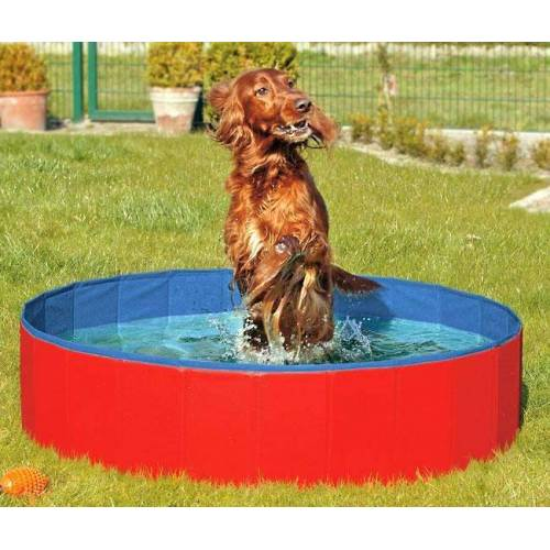 Karlie DOGGY POOL der Swimmingpool für Hunde - Rot-Blau - 120 cm