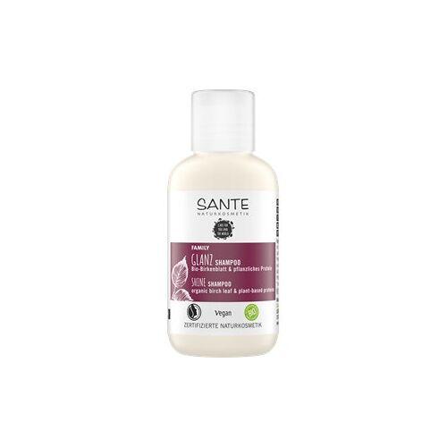 Sante Naturkosmetik Haarpflege Shampoo Glanz Shampoo Bio-Birkenblatt & pflanzliches Protein 500 ml