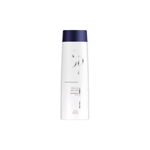 Wella Men Shampoo Silver Shampoo 250 ml