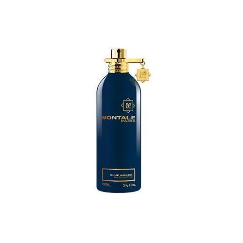 Montale Düfte Ambra Blue Amber Eau de Parfum Spray 100 ml