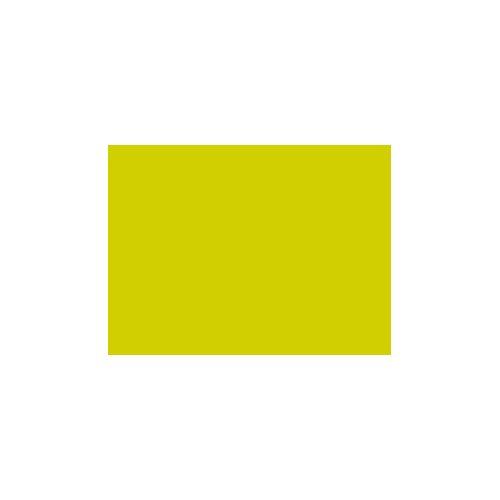 Duni Tischset Papier kiwi 35x45 250St.