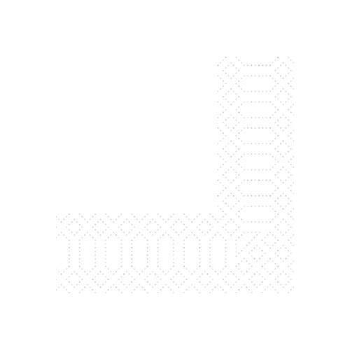 Duni Zelltuch Servietten weiß 24x24 3lag 250St.