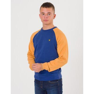 Scott Lyle & Scott, Reverse Texture Raglan Sweatshirt, Blå, Trøjer/Cardigans till Dreng, 10-11 år - Børnetøj - Scott