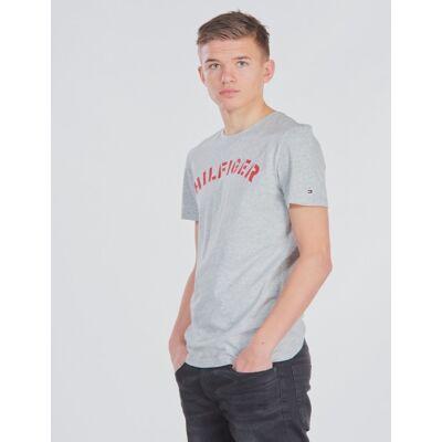 Tommy Hilfiger, ESSENTIAL TOMMY GRAPHIC TEE, Grå, T-shirt/toppe till Dreng, 12 år - Børnetøj - Tommy Hilfiger