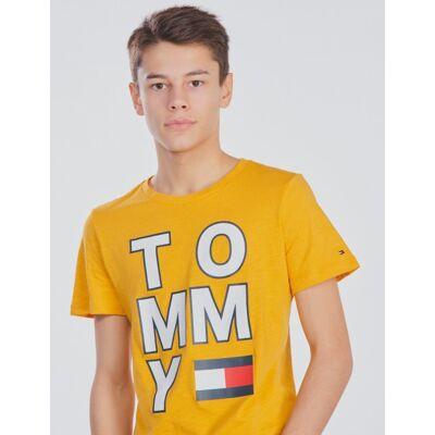 Tommy Hilfiger, MULTI APPLICATION AW TEE, Gul, T-shirt/toppe till Dreng, 10 år - Børnetøj - Tommy Hilfiger