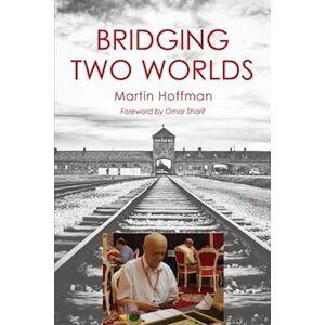 Martin Hoffman Bridging Two Worlds