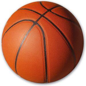 SureShot New Port basketball + pumpe
